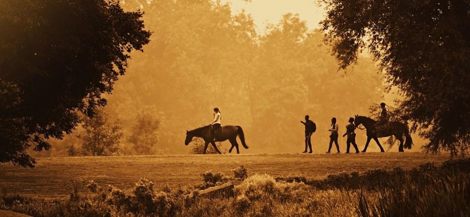 A cheval sur la route