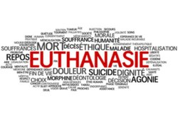 Validité de la déclaration d'euthanasie