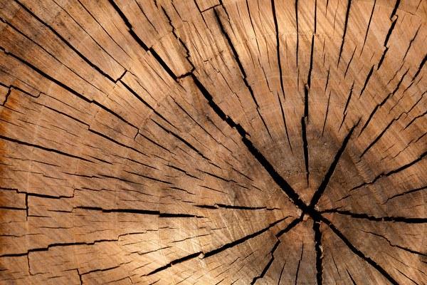 lumber 84678 1920 (1)