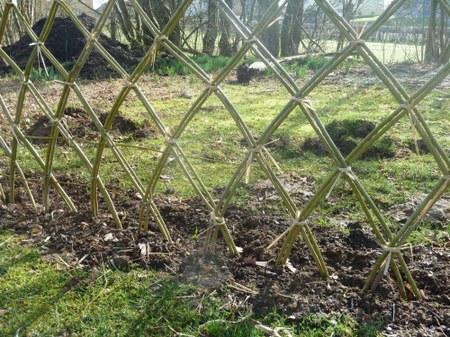 Réaliser une clôture en osier vivant